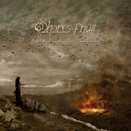 shore of null