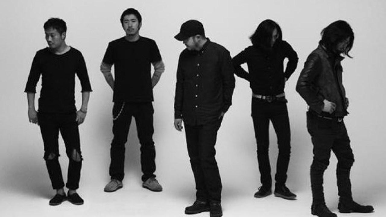 envy band
